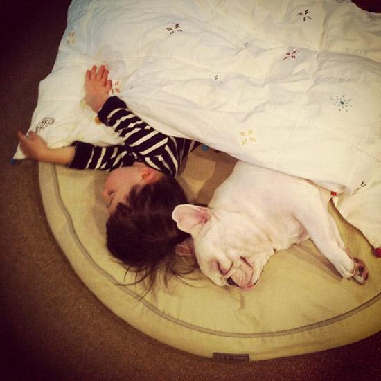 Un petit garçon japonais et son bouledogue très mignon (2)